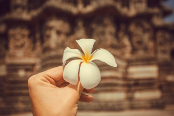 Flower in the hand of a tourist past an historical walls of old temple in India. Traditional architecture of Asia and vacation mood