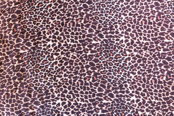 Background with pattern of wild animal fur
