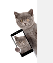 Cat with smartphone peeking above white banner and taking a selfie. Isolated on white background