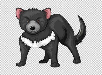 Tasmanian devil on transparent background