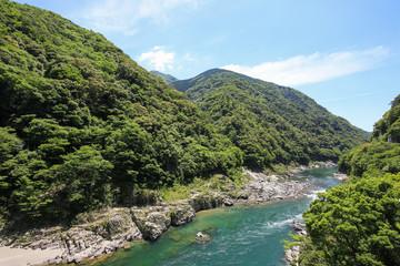 徳島県三好市 大歩危峡