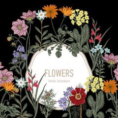 Летние полевые цветы. Векторная открытка в стиле винтаж. Растительный рисунок.