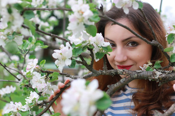 woman and flowers tree apple