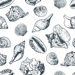 Vector seamless pattern with hand drawn outline various seashells. Sketch style black and white background with isolated shells. Summer design for fabric and fashion textile print.