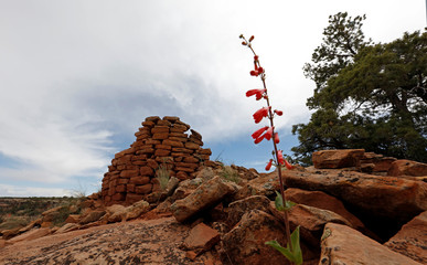 Cave Towers in Bears Ears National Monument is pictured in Utah's Four Corners region