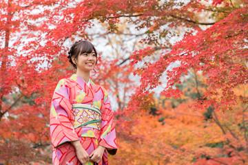 portrait of young asian woman waering kimono in autumn