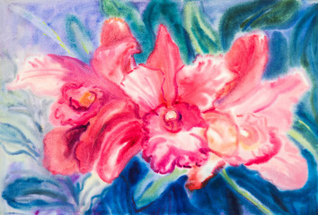Flower original watercolor painting red color of orchid flower