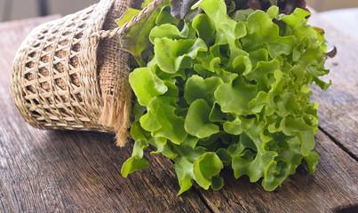 green oak lettuce on wooden background