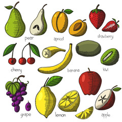 Collection of cartoon juicy fruits and berries. Set of fruit and berry icons. Isolated on white background. Hand drawn vector image in doodle style.