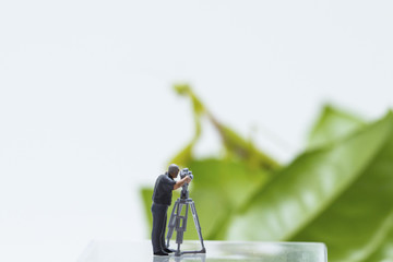 Tiny figurine of cameraman filming green leaves and mantis on background.