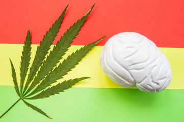 Medical cannabis leaf and brain anatomical figure lying on red, yellow and green Rasta background. Influence of culture of Rasta and smoke marijuana on brain, thinking, creativity, artistic ability