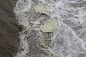 Plastikmüll in unseren Gewässern