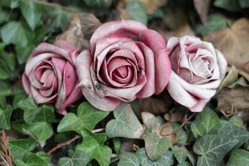 Wunderschöne Traurigkeit - Rosen in Blättern