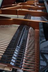 Konzertflügel Musik