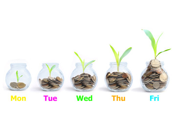 Save money concept - coins in a glass jar with a plant.