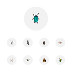 Realistic Midge, Insect, Poisonous And Other Vector Elements. Set Of Insect Realistic Symbols Also Includes Bug, Insect, Mosquito Objects.