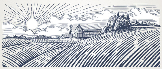 Poster Wit Rural landscape with a farm in engraving style. Hand drawn and converted to vector Illustration