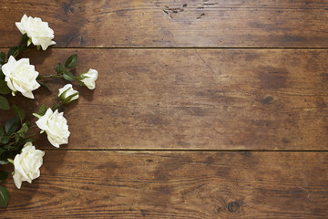 Roses on rustic wood background