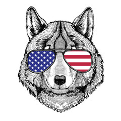 Wolf Dog Hand drawn illustration for tattoo, emblem, badge, logo