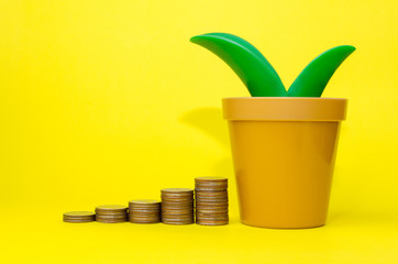 money coin stack growing and piggy bank or tree shaped money box on yellow background, financial, business, saving money concept, selective focus