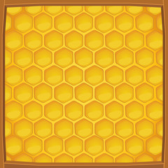 Cartoon honeycomb packed in wooden frame pattern background, Vector illustration