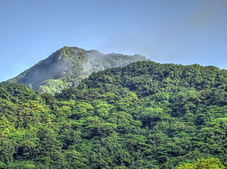 Fotorollo Olivgrun Volcan mombacho natural park, Nicaragua