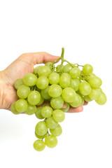 Hand mit Weintrauben