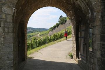 Tor zu Weinfranken
