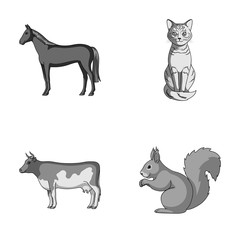Horse, cow, cat, squirrel and other kinds of animals.Animals set collection icons in monochrome style vector symbol stock illustration web.