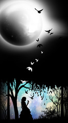 Princess of the night silhouette art photo manipulation