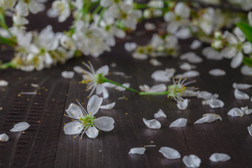 spring bouquet of flowers on the wooden table