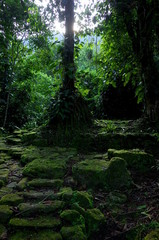 Stone paths leading to Ciudad Perdida (Lost City) in Colombia