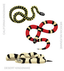 Snake Kingsnake Set Cartoon Vector Illustration