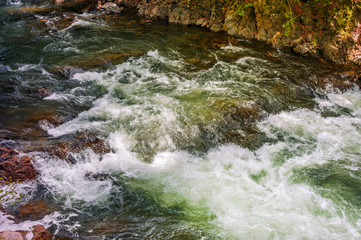 Rapid stream with rocky shore