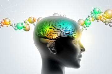 Man head showing the human brain
