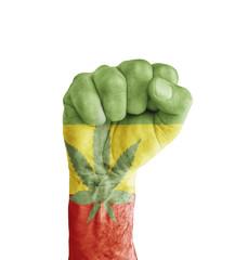 Flag of Rasta painted on human fist like victory symbol