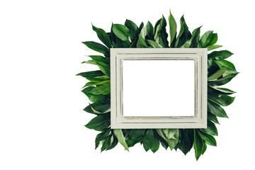 Pastel wooden frame decorated with green leaves, space for text. mock up