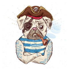 Illustration of pirate pug dog .on blue background in vector eps10