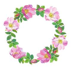 Rose Hip.wreath Greeting
