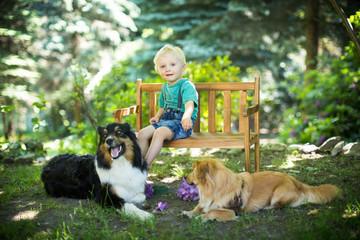 Junge mit seinen Hunden