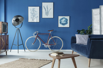 Living room with bicycle