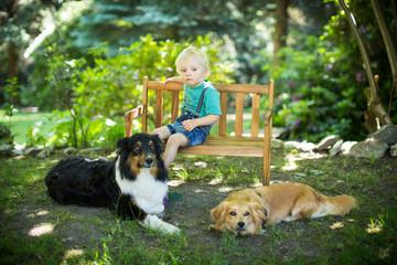 Kind mit seinen Hunden