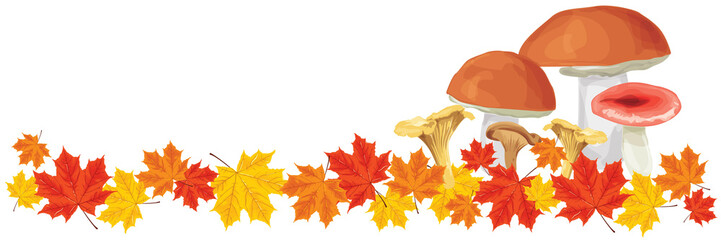 edible mushrooms and red, yellow, brown autumn leaves fall