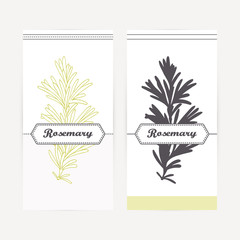 Hand drawn rosemary in outline and silhouette style. Spicy herbs
