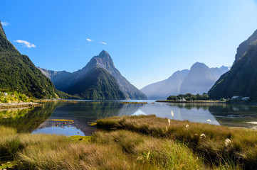 Mildford Sound in New Zealand