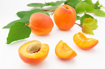 Ripe, juicy and appetizing apricot fruits with green leaves
