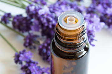 A bottle of lavender essential oil on a white background