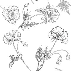 Seamless pattern with poppy flowers in botanical vintage style. Outline hand drawing coloring page for adult coloring book. Stock line vector illustration.