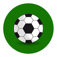 Soccer ball on a green background. Vector Image