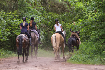 Group of friends riding horses in the forest